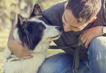 Lavorare con gli animali: opportunità professionali nel settore dell'animal care